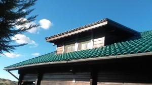 teja ligera roofy verde